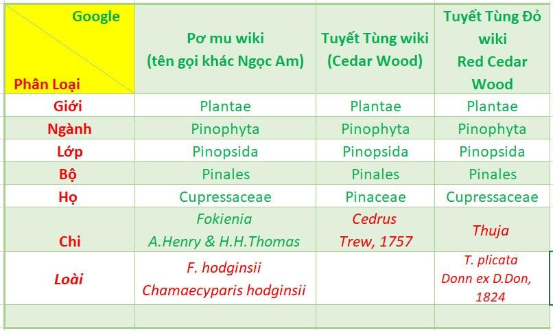 Bảng phân loại nhận biết tên gọi Pơ Mu, Tuyết Tùng, Tuyết Tùng đỏ